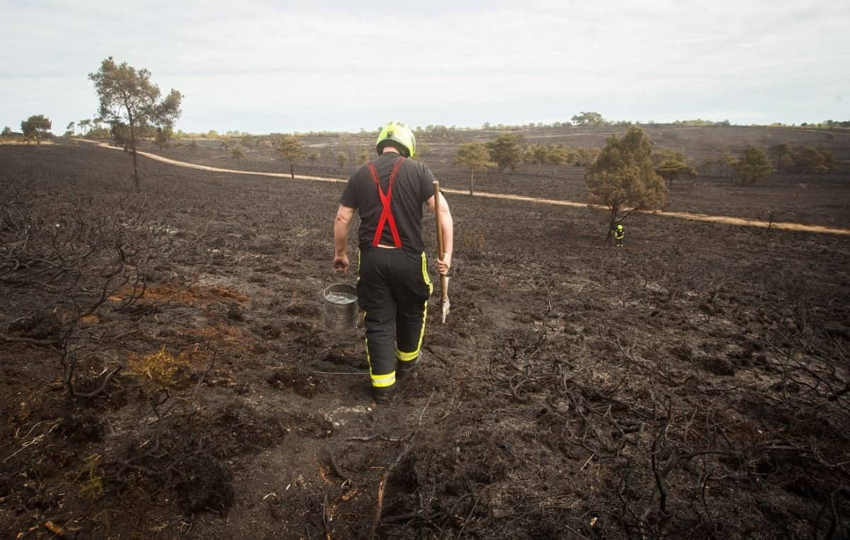 Firefighters tend to gorse land at the Woodbury Common near Exeter, Devon. Acres of the land has been destroyed after a major fire. 24/04/2017  See SWNS story SWFIRE; Dramatic footage shows a huge gorse fire that raged out of control for eight hours - injuring FIVE firefighters. A huge swathe of the countryside has now been blackened following the blaze at Woodbury Common. which spread across 100 acres of heathland and could be seen for miles. More than 100 firefighters battled the fire which broke out at 2pm on Sunday. One had burns to his face and needed hospital treatment while four others suffered from smoke inhalation. Guests from the local Woodbury Park Hotel had to be evacuated as an area of 1.5 square miles was completely destroyed.