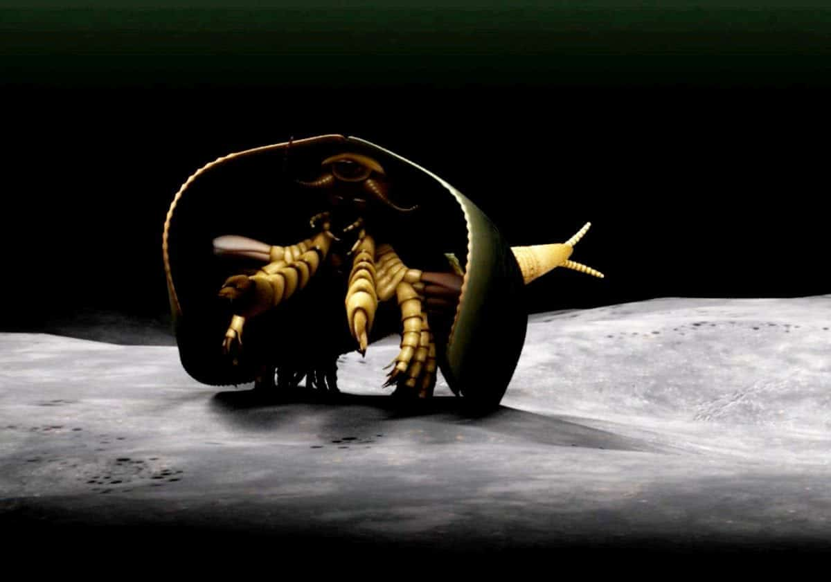 """***EMBARGOED UNTIL 6PM BST, WED APR 26TH (17:00 GMT)***A 507 million-year-old sea monster with can-opener like pincers has been identified for the first time. See NATIONAL story NNMONSTER.  And the strange-looking creature could point to the origin of modern day millipedes, crabs and insects, according to paleontologists.  Canadian scientists have uncovered the new fossil species that sheds light on the origin of mandibulates - the most abundant and diverse group of organisms on Earth, which includes flies, ants, crayfish and centipedes.  The creature, named Tokummia katalepsis by the researchers, is a new and """"exceptionally well-preserved"""" fossilised arthropod - a common group of invertebrate animals with segmented limbs and hardened exoskeletons.  Tokummia documents for the first time in detail the anatomy of early """"mandibulates"""", a sub-group of arthropods which possess a pair of specialised appendages known as mandibles, used to grasp, crush and cut their food.  Study lead author Cedric Aria, a recent graduate of the PhD programme at the University of Toronto, said: """"In spite of their colossal diversity today, the origin of mandibulates had largely remained a mystery."""