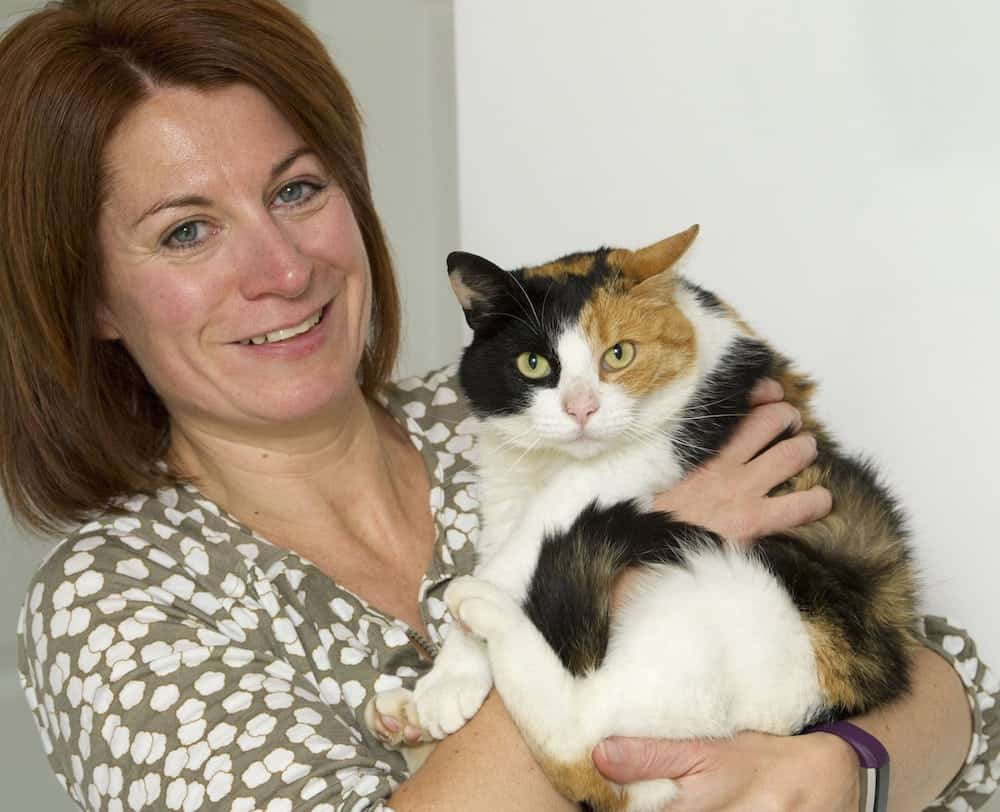 Elaine Harman with her cat Ginny who had gone missing from the family home in Dunbar, West Lothian only to turn up 30 miles awayy at Portobello Beach in Edinburgh. See Centre Press CPCAT; A family have been reunited with their beloved cat which went AWOL one year ago and decided to live on a BEACH. Adventurous Ginny disappeared last summer, leaving her owners distraught and worried. But the Harmans were left stunned when they received a call out of the blue informing them that Ginny had been discovered living by the sea. The three-year-old feline had embarked upon a 30-mile journey, from Dunbar, East Lothian, to Portobello, a coastal suburb of Edinburgh. There, she was spotted numerous times by passers-by over the last year.