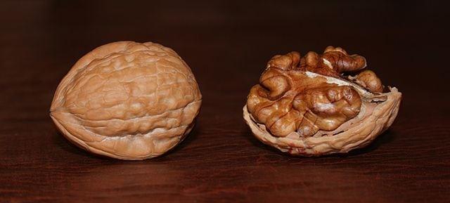Walnuts (c) AndonicO