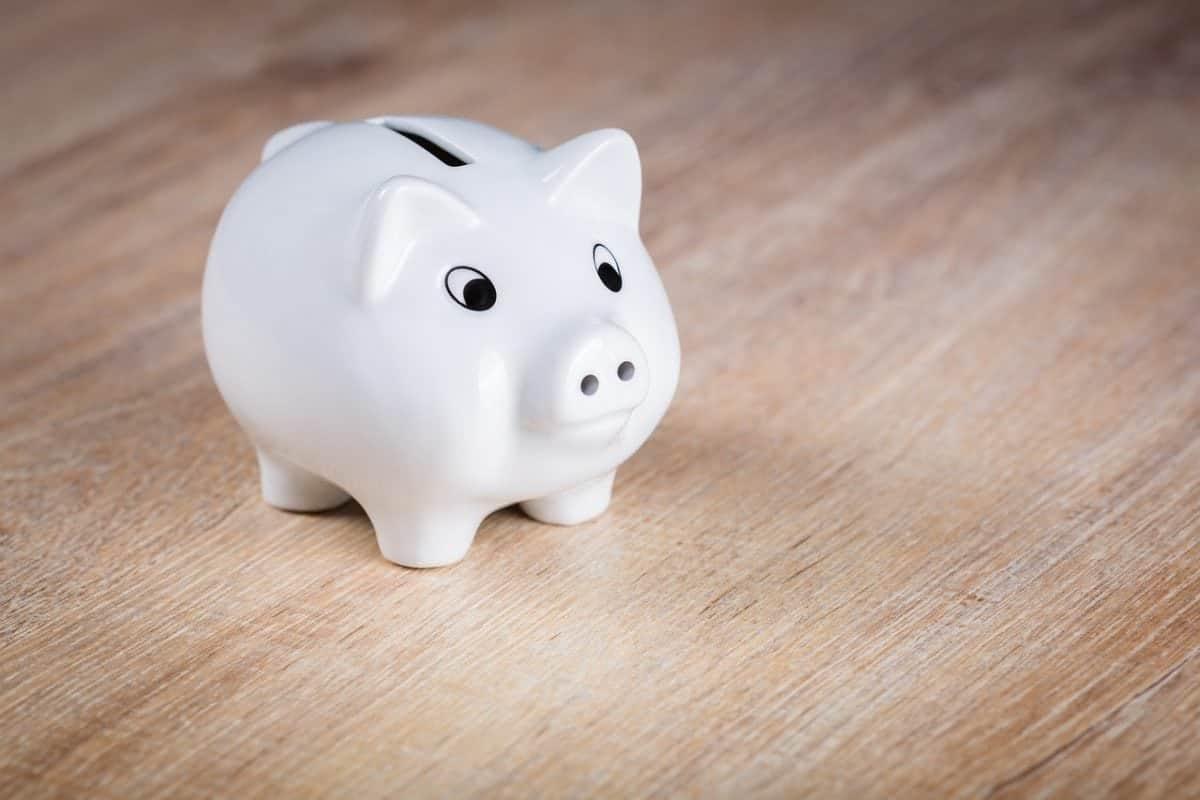 Piglet Piggy Bank Economical Finance Save Ceramic