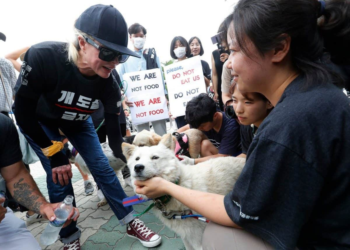 Kim Basinger, left, with a pet dog during a rally to oppose eating dog meat, in front of the National Assembly in Seoul (Ahn Young-joon/AP)