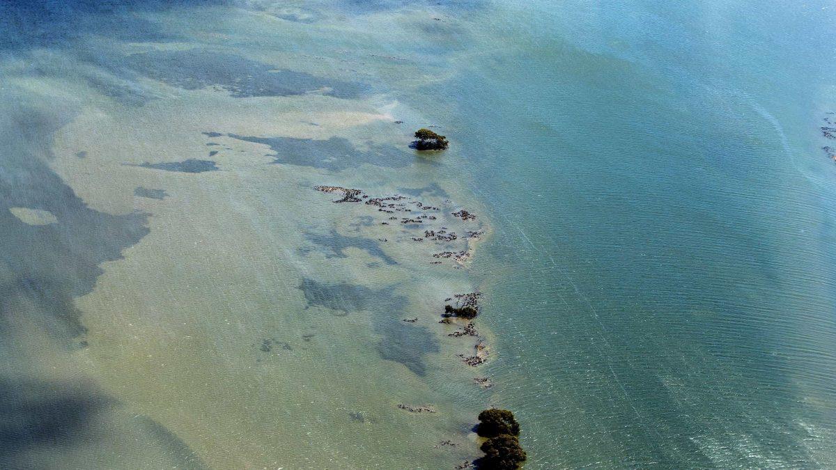 Great Barrier Reef (PA)