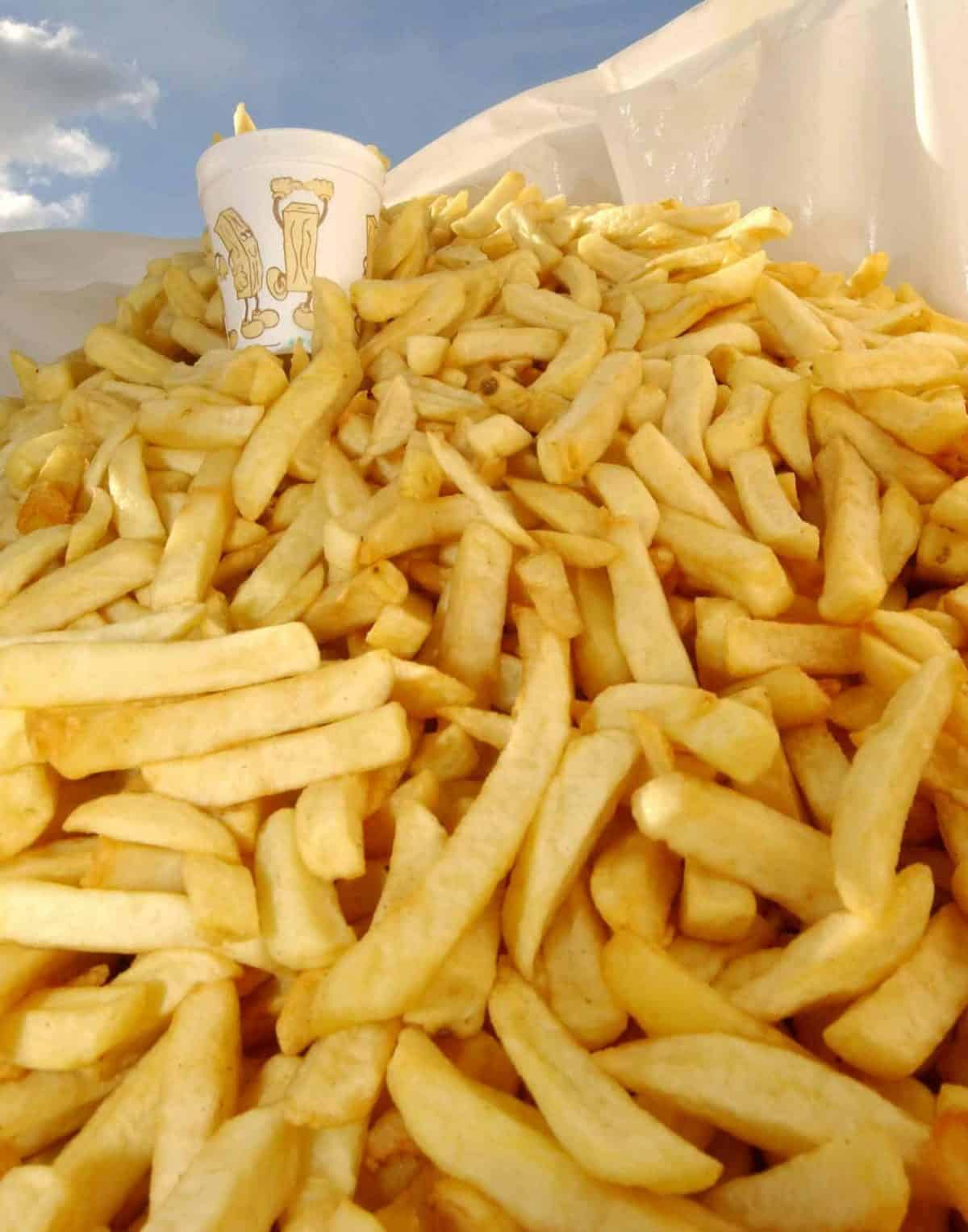 1500 portions of chips form the World's largest bag of chips at Hereford Racecourse in Hereford as part of National Chip Week.