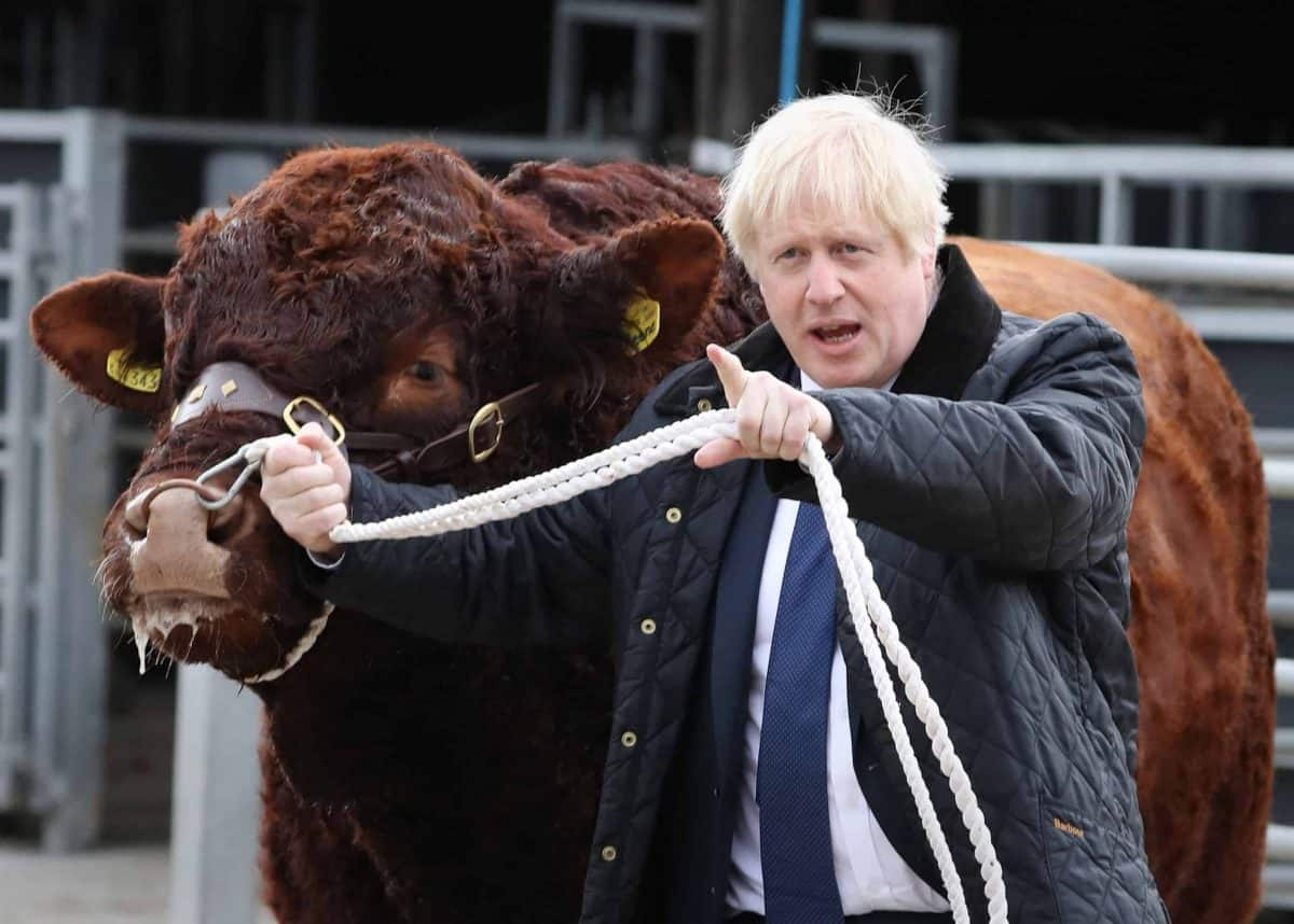Prime Minister Boris Johnson walking a bull during a visit to Darnford Farm in Banchory near Aberdeen to coincide with the publication of Lord Bew's review and an announcement of extra funding for Scottish farmers.