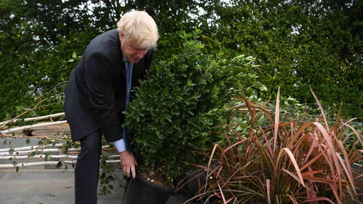 Boris Johnson plants tree