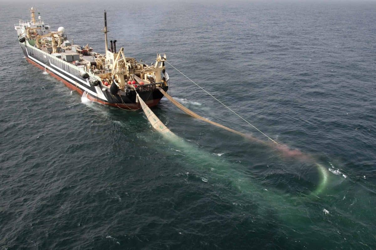 Undated handout photo issued by Greenpeace of the world's second largest factory fishing trawler, the Lithuanian FV Margiris, which has been spotted off the south coast of England, raising environmental concerns. Credit;PA