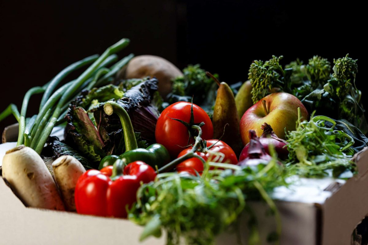pale green dot produce delivery