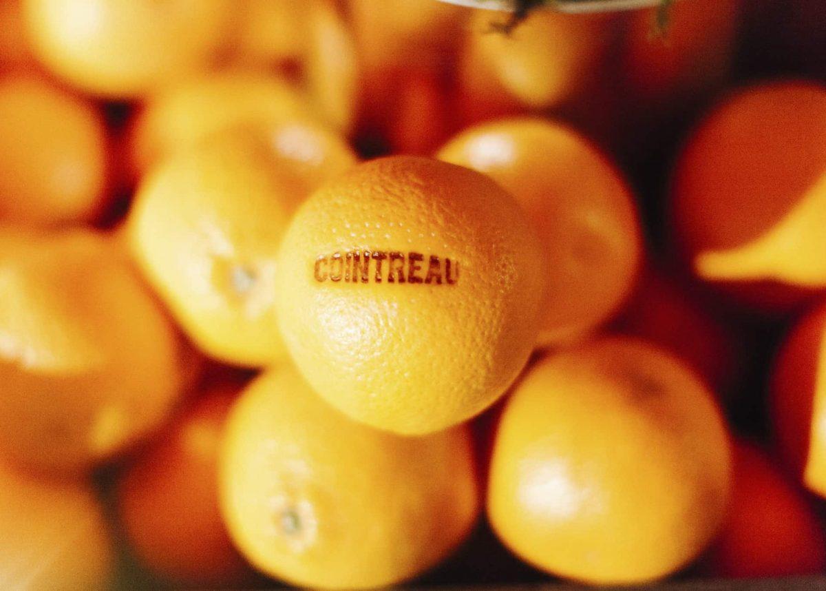 Cointreau-Photo-Orange_13 (1)