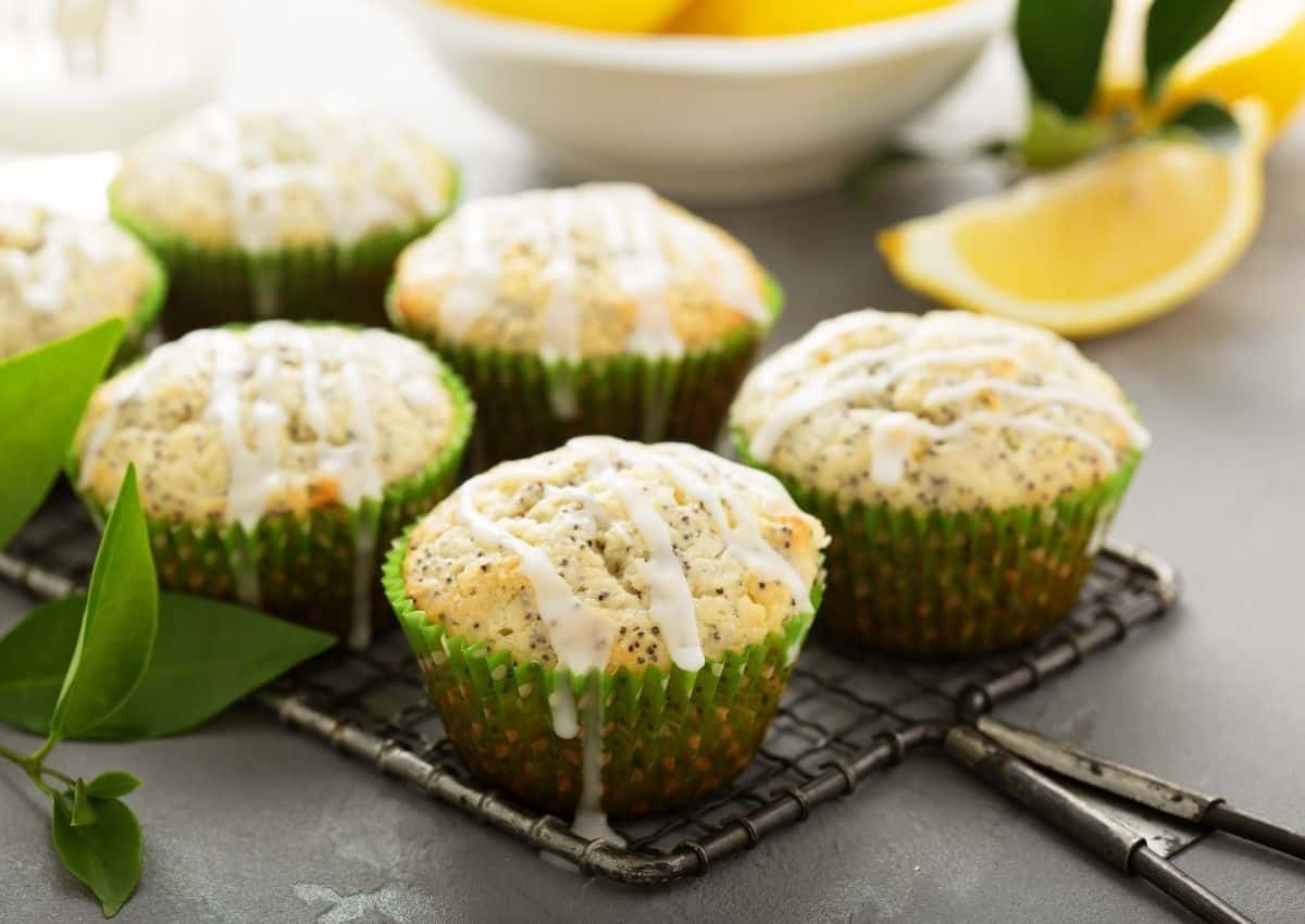 How To Make: Poppy Seed Muffins made with a nutritious shake