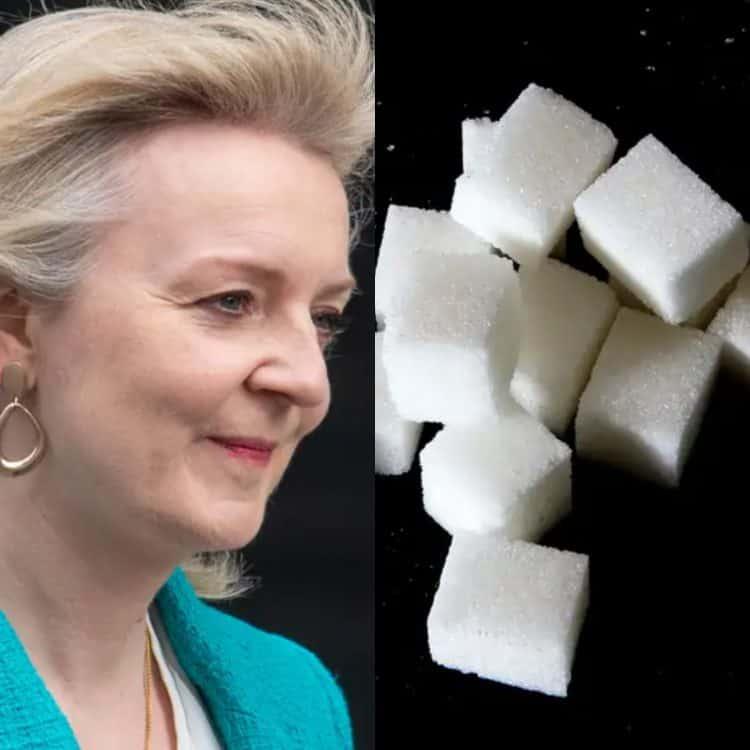Liz Truss Sugar