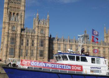 Fishermen and Greenpeace activists